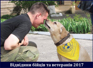 hospitals2016_ukr